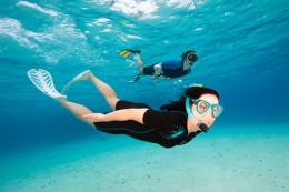 Diving / Snorkling